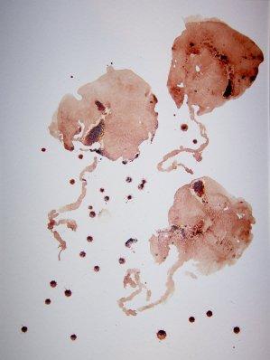 placenta-tastic